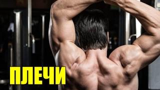 Самое Эффективное Упражнение Для Раскачки Широких Плеч