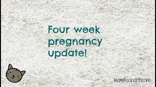 four week pregnancy update!