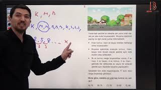 12) İlyas GÜNEŞ - Ardışık Sayılar TEST - V (TYT Matematik Soru Çözüm) 2019