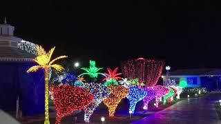 Grand Cayman Christmas Lights