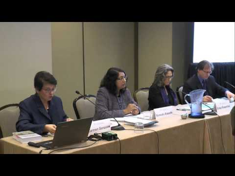 Climate Litigation and the North-South Divide in International Environmental Law
