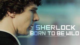 sherlock | born to be wild (thc trailer)