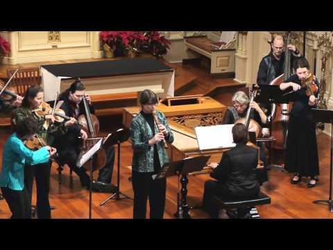 Vivaldi Recorder Concerto: La Tempesta di Mare RV 433