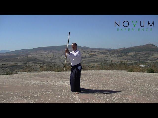 Jusan no Jo Kata - Aikido Novum Experience - 合氣道 - 合氣杖 - 十三の杖形