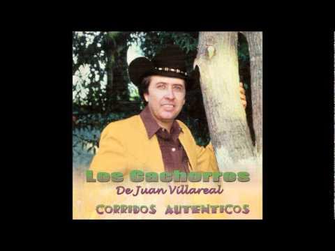 CORRIDOS JUAN VILLARREAL Y SUS CACHORROS