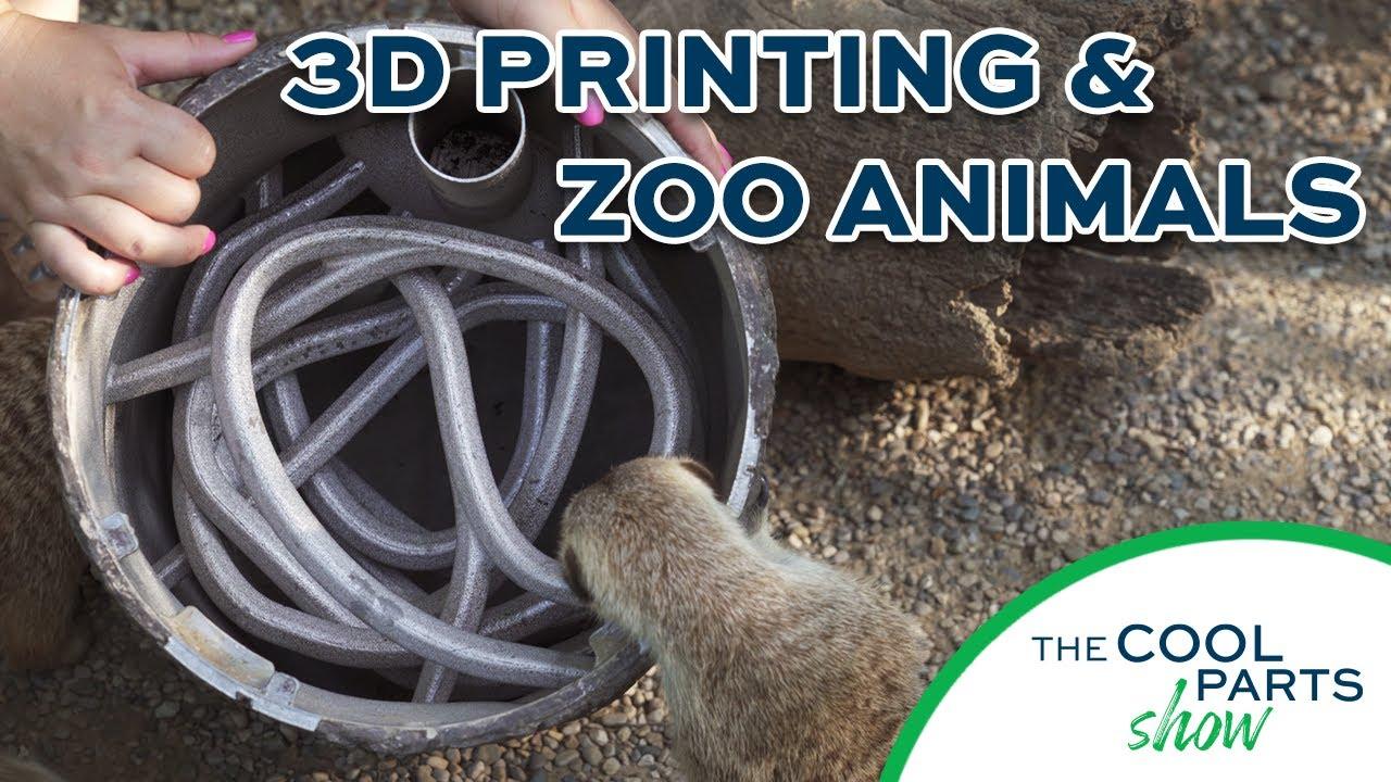 3D Printed Animal Enrichment Device: The Cool Parts Show Bonus Episode