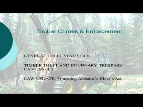 Timber Theft & Arson Investigation