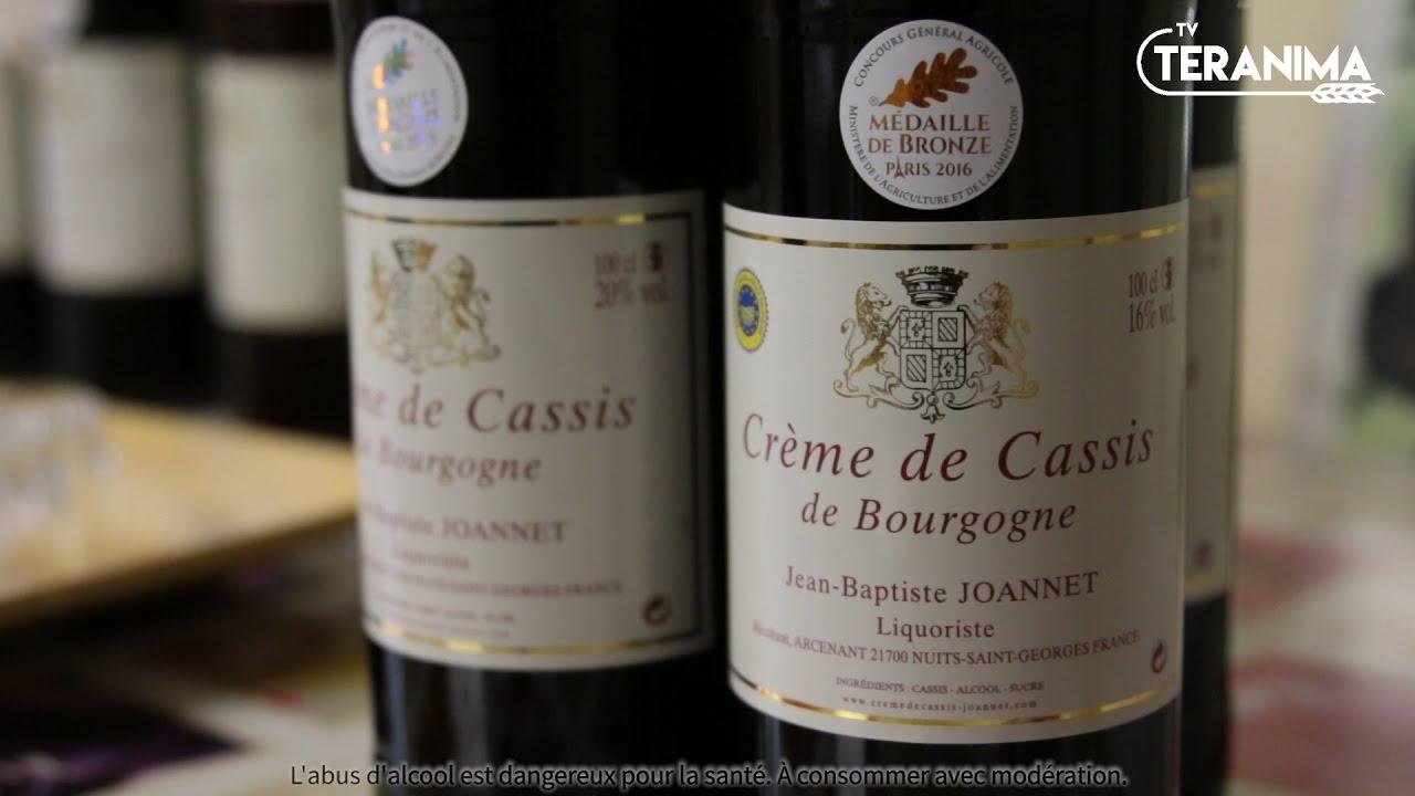 Le Cassis De Bourgogne Labellise Igp Youtube