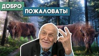 Николай Дроздов о том, как выжить