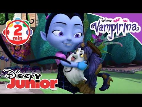 vampirina-songs:-♫-vollkommen-unvollkommen-♫-|-disney-junior-musik