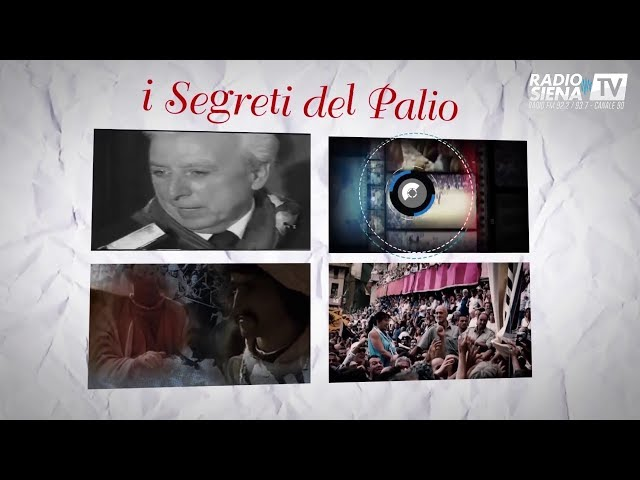 LE STAGIONI DEL PALIO 11