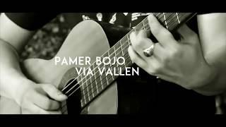 Via Vallen - Pamer Bojo ( Acoustic Karaoke / Backing Track)