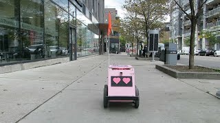 Meet Geoffrey, the pink delivery robot making his way around Corktown