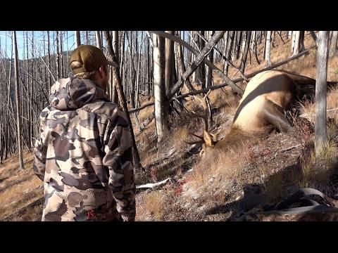 Idaho Elk Hunt 2016 - Backcountry
