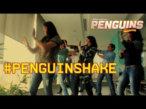 India Celebrates With #PenguinShake ft. Pitbull