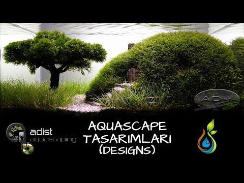 ADist - Efsane Akvaryum Tasarımları 1. Bölüm, 2010-2011 Tasarımları