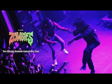FLATBUSH ZOMBIES - DON'T DO DRUGS KIDS | LIVE IN RALEIGH, NC (2014)