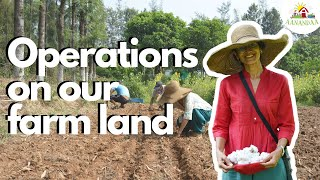 Operations at a Permaculture Farm!