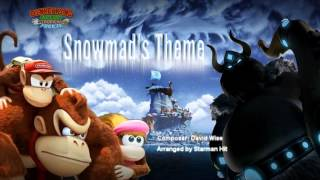 Donkey Kong Country Tropical Freeze - Snowmads' Island Theme (Cover)