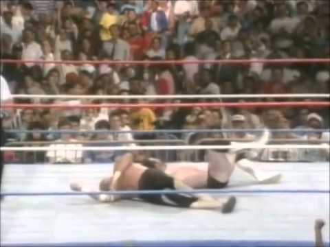 Jake the Snake Roberts DDT is listed (or ranked) 4 on the list The Best Finishing Moves in Wrestling History