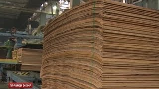 Фанерный завод в Верхней Синячихе станет крупнейшим в России(Крупнейший в России завод по производству древесно-стружечных плит появится в Свердловской области. Предп..., 2014-03-14T17:22:27.000Z)
