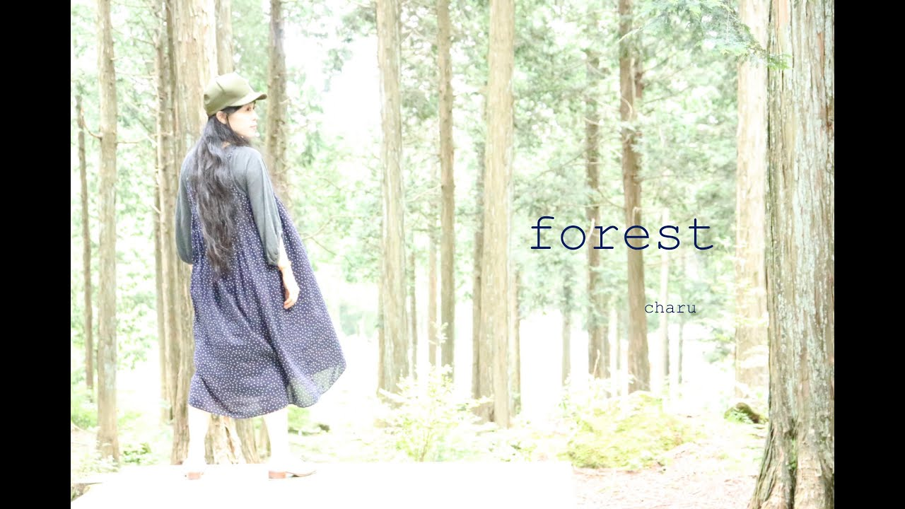 【forest】charu : contemporary tap dancer