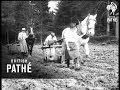 Women Agriculturists (1914-1918)