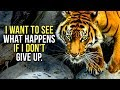 Get Up and Never Give Up