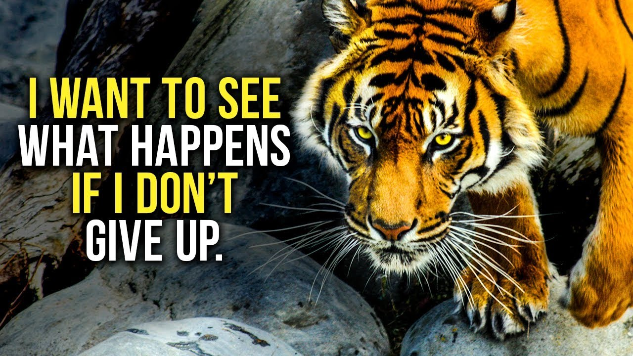 GET UP AND NEVER GIVE UP - New Motivational Video Compilation - 30-Minute Morning Motivation
