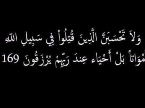 صور شهداء العراق ولاتحسبن الذين قتلوا في سبيل الله أمواتأ بل أحياء عند ربهم يرزقون