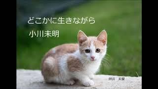 小川未明さんの「どこかに生きながら」を朗読しました。 戦後の昭和21...