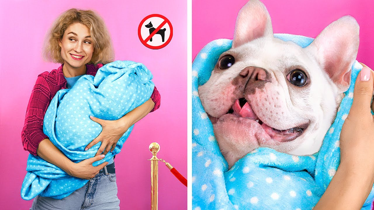 Download 13 Ways to Sneak Pets into the Movies!
