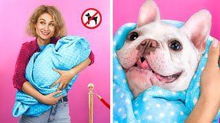 13 Ways to Sneak Pets into the Movies!