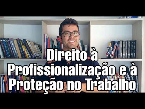 direito-à-profissionalização-e-à-proteção-no-trabalho:-artigo-a-artigo-atualizada---eca