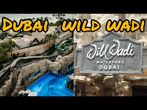 Wild Wadi Water Park Dubai 🌊