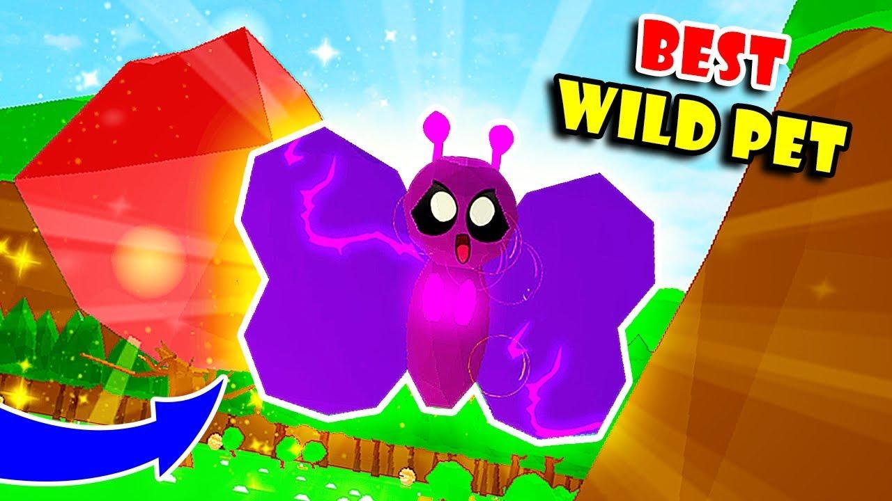I Got The New Rarest Strongest Wild Pet Buttergloom In Pet Trainer Simulator Roblox - nuevo arbusto gigante y pet salvaje roblox pet trainer
