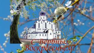 Вербное Воскресенье красивое нежное  душевное поздравление