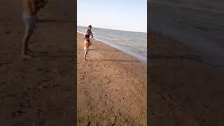 Рибалка шардара