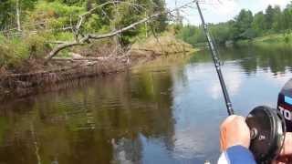 видео Рыбалка на Волге в Тверской области - особенности, лучшие места и отзывы