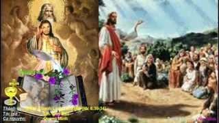(CN-16-B) Đức Giêsu thấy một đám người rất đông thì chạnh lòng thương