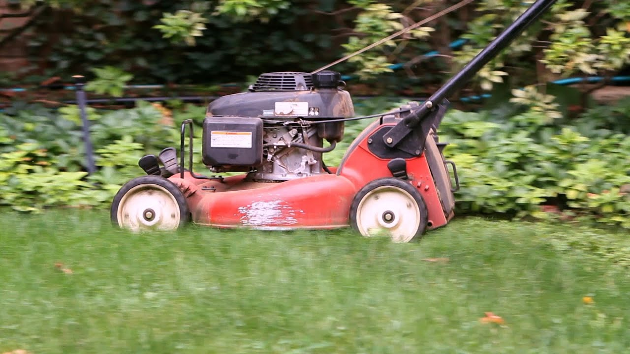 How To Maintain Your Lawn Garden Care