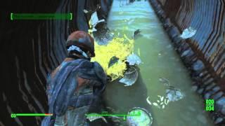 Fallout 4 Секреты - Где найти легендарный дробовик - Взрывной Боевой Дробовик.