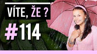 #114 ● VÍTE, ŽE...?