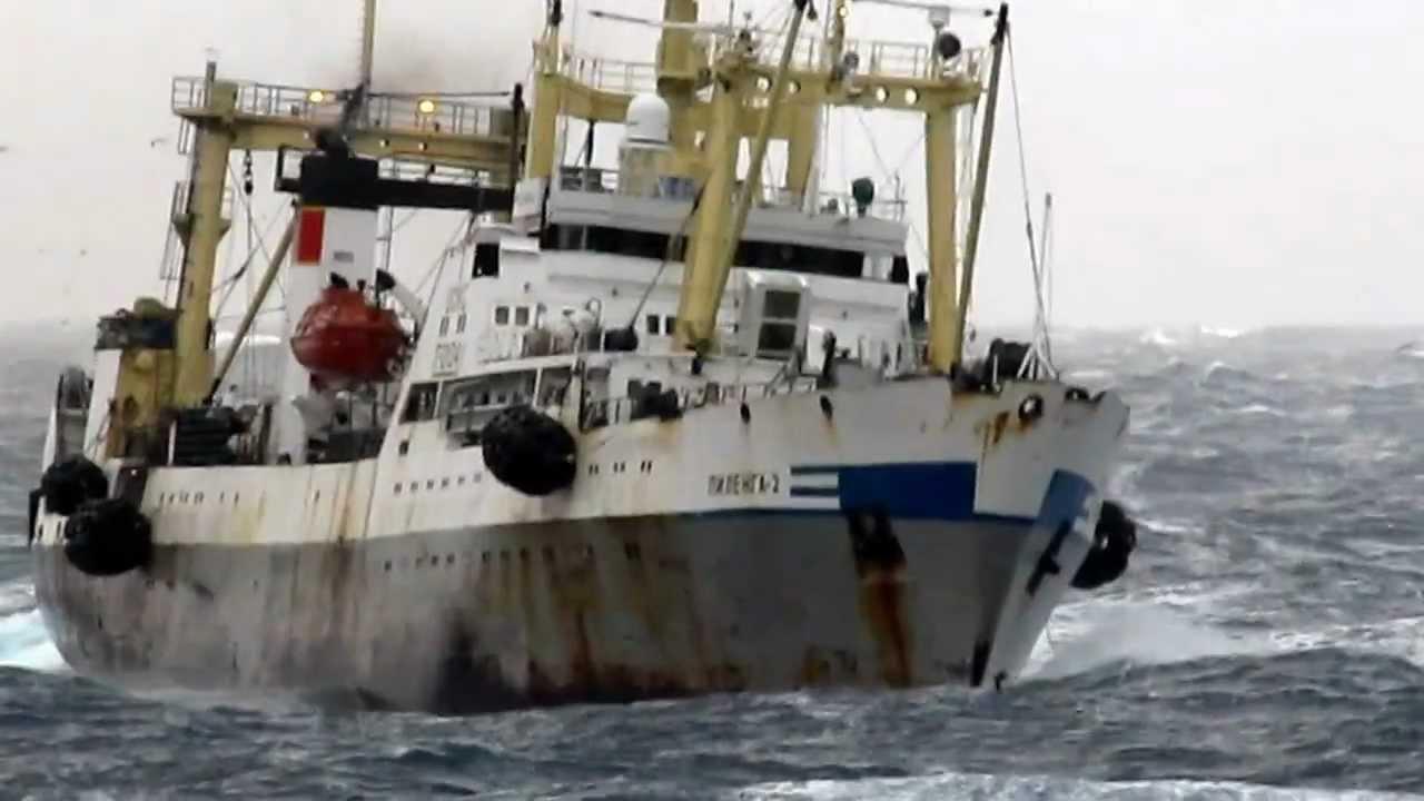 Выживший в катастрофе траулера «Дальний Восток»: судно погубила ... | 720x1280