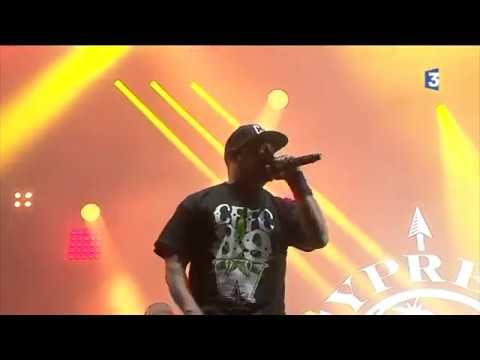 Début du concert de Cypress Hill - Cabaret Vert 2017