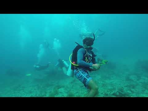 Molasses Reef - Hole In The Wall   8-10-17