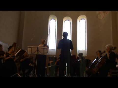 Государственный камерный оркестр Республики Абхазия. Вивальди, Времена года, Лето (часть 3)