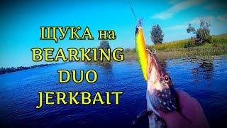 ЩУКА на Волге | Разловил воблер BEARKING Duo JerkBait | Рыбалка в Ярославле