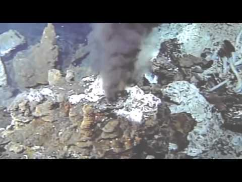 Discovery Channel The Deepest Place On Earth Mariana Trench HD Documentary YouTube