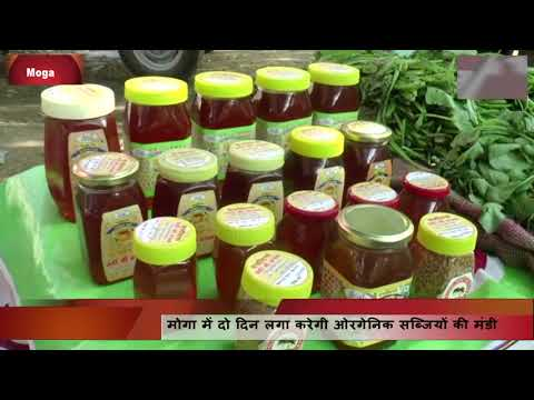 Sale of Organic Vegetables by Moga Farmers